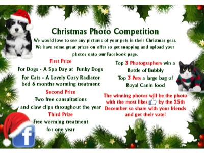 Enter our Christmas Photo Competition