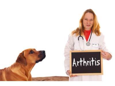 Arthritis Client Education evening