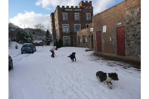 Snow is so fun!