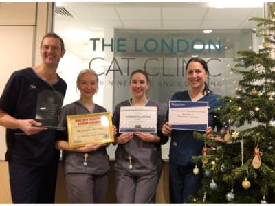 The London Cat Clinic talk about the Design Awards