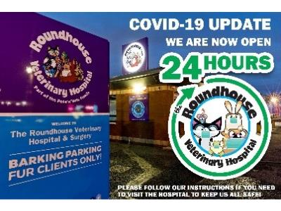 Roundhouse Vet Hospital - Our Lockdown Story