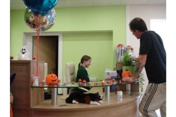 Halloween themed reception desk