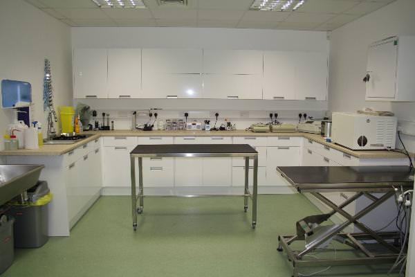 Nice, tidy prep room!