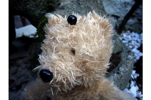 Bean reconfigures her teddy