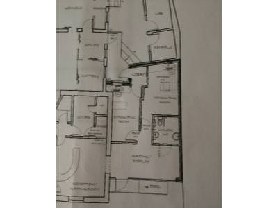 Plans for feline centre