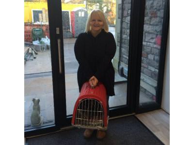 Frst cat patient through cat door on 26/1/15
